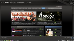 Screenshot: Steam für Linux